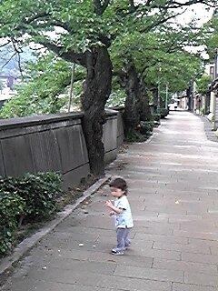 金沢〜城端