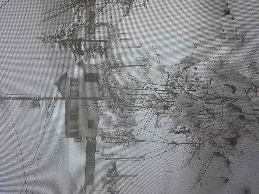 雪はこんこん
